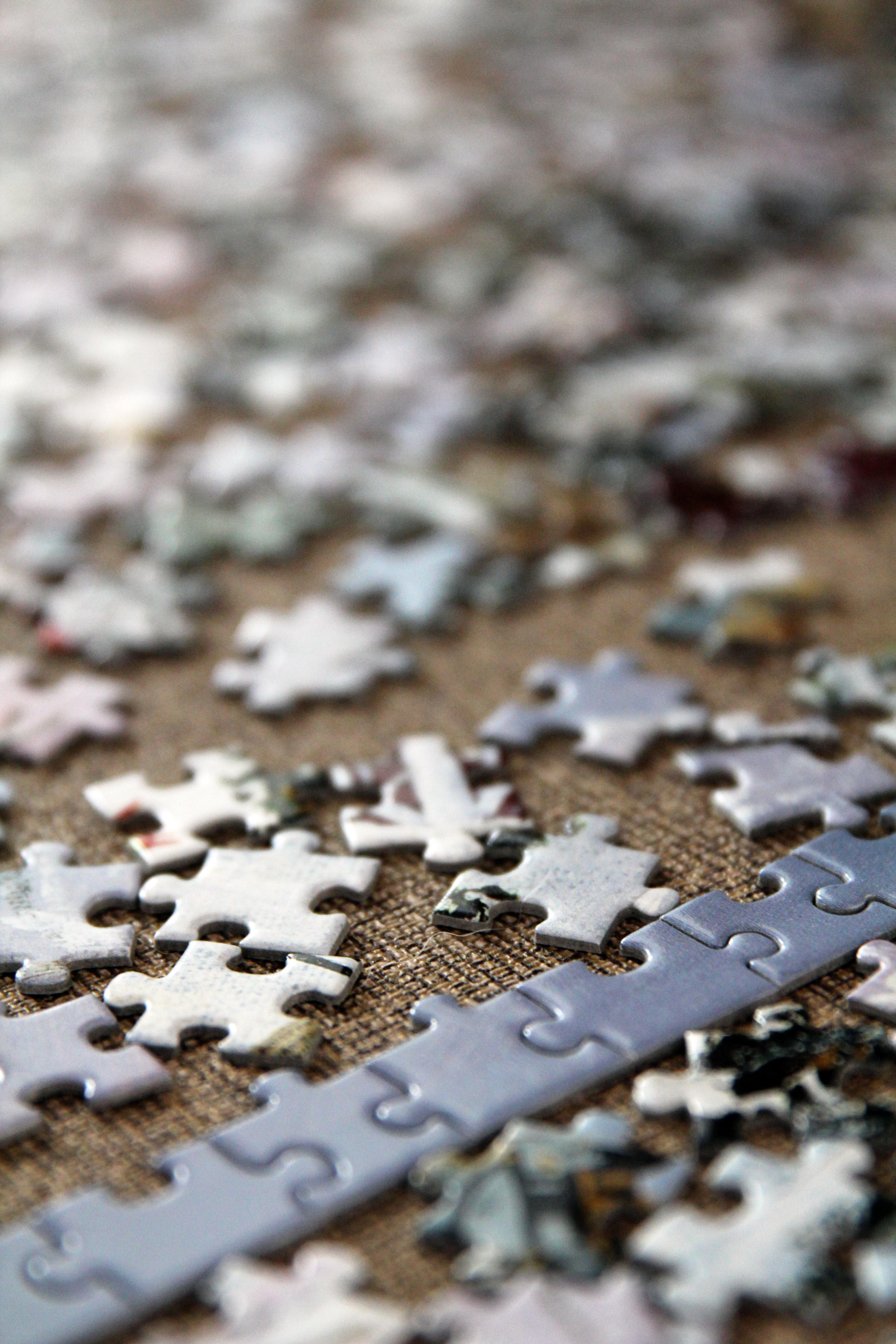 Waarnemen en puzzelen
